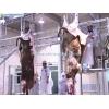 屠宰场设备-肉牛屠宰机械-预剥皮-剥皮机