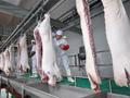 重庆涪陵:清溪镇建起标准化屠宰场