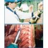 查维斯美国原装进口屠宰线上工具蒸汽消毒去毛机