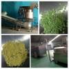 衡水面包糠机器
