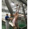 屠宰厂设备-羊扯皮机